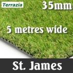 Artificial Grass Lawn - Terrazia St James
